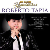 Las Bandas Románticas by Roberto Tapia