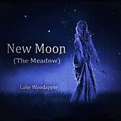 New Moon (The Meadow) (Piano Solo Fom the Movie: The Twilight Saga) by Luke Woodapple