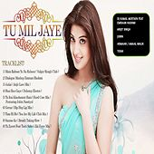 Tu Mil Jaye by Various