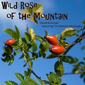 Wild Rose of the Mountain (feat. Tim McGaughy & Becky McGaughy) by David Kuncicky