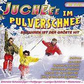 Juchee im Pulverschnee by Various Artists