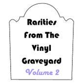 Rarities from the Vinyl Graveyard, Vol. 2 von Various Artists