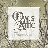 Old Souls, Young Hearts by Owls In the Attic
