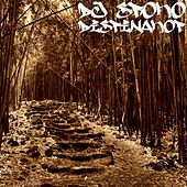Dispinakop by DJ Spoko