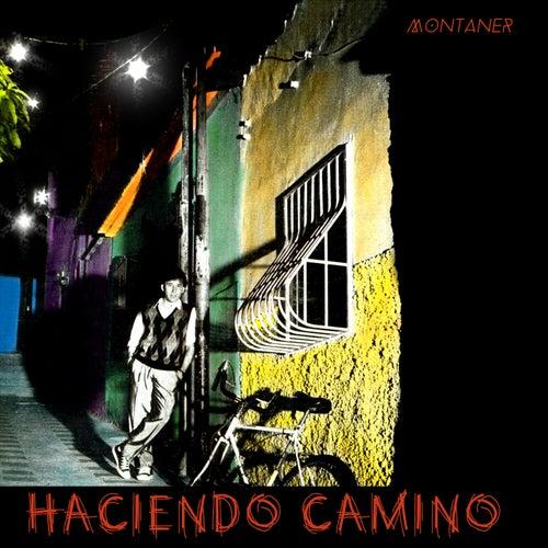 Haciendo Camino by Ricardo Montaner
