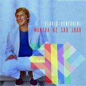 Mantra de São João by Flavio Venturini