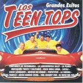 Los Teen Tops  Grandes Exitos by Los Teen Tops
