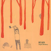 Simple Machinery by The Bears