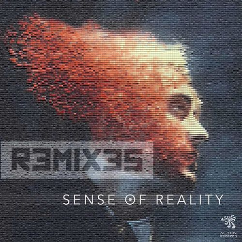 Sense of Reality Remixes by Vermont