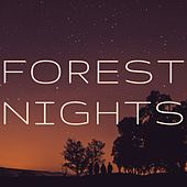 Forest Nights by Meditation Music Zone
