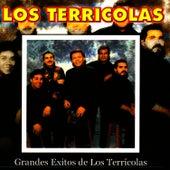 Grandes Exitos de los Terricolas by Los Terricolas