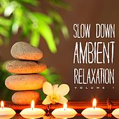 Slow Down Ambient Relaxation, Vol. 1 by Various Artists