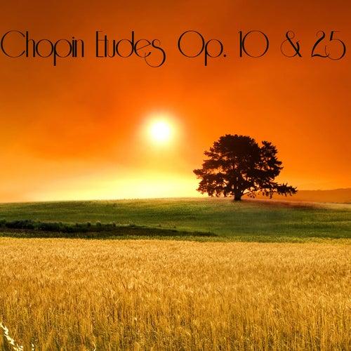 Chopin Etudes Op. 10 & 25 by Vladimir Ashkenazy