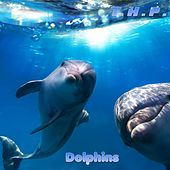 Dolphins by Thp