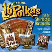 16 zünftige Polkas mit der steirischen Harmonika - Folge 2 by Various Artists