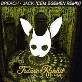 Jack (Cem Egemen Remix) by Breach