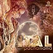 Pachamama by Various Artists