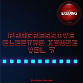 Progressive Electro House, Vol. 7 by Various Artists