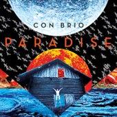 Paradise by Con Brio