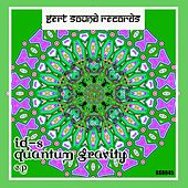 Quantum Gravity - Single by The Ids