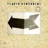 Cidade Veloz by Flavio Venturini