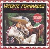 Por Tu Maldito Amor by Vicente Fernández