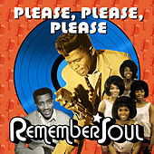 Please, Please, Please - Remember Soul von Various Artists