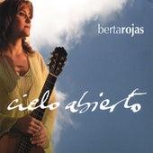 Cielo Abierto by Berta Rojas