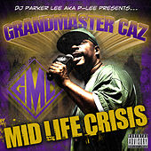 Mid Life Crisis by Various Artists