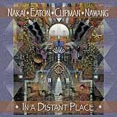 In A Distant Place by R. Carlos Nakai