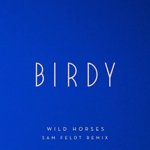 Wild Horses (Sam Feldt Remix) by Birdy