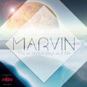 Deine Venus liegt auf Eis by Marvin