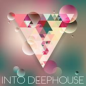Into Deephouse by Various Artists
