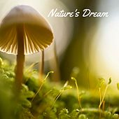 Nature's Dream by Musica Relajante