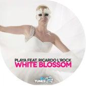 White Blossom by Playa