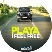 I Feel Free by Playa