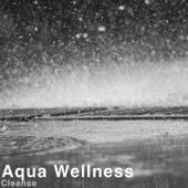 Cleanse by Aqua Wellness
