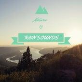 Nature & Rain Sounds by Zen Music Garden