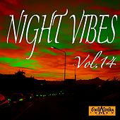 Night Vibes, Vol. 14 by Arno