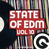 State Of EDM, Vol. 10 - Single by Rich Knochel