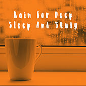 Rain for Deep Sleep And Study by Various Artists