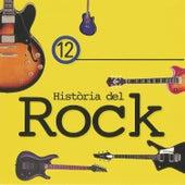 Història del Rock 12 by Various Artists