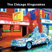 South Side Soul by Chicago Kingsnakes