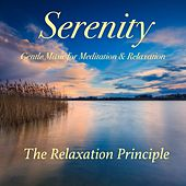 Serenity (Gentle Music for Meditation and Relaxation) by The Relaxation Principle