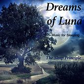 Dreams of Luna (Music for Sleeping) by The Sleep Principle
