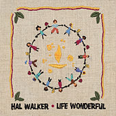 Life Wonderful by Hal Walker