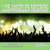En Vivo by Los Angeles Negros
