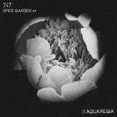 Spice Garden - Single by 747