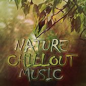 Nature Chillout Music by Various Artists