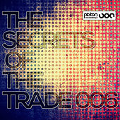 The Secrets Of The Trade 006 by Various Artists